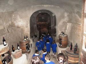 Visita Didattica Cantina Castello Ducale Castel Campagnano